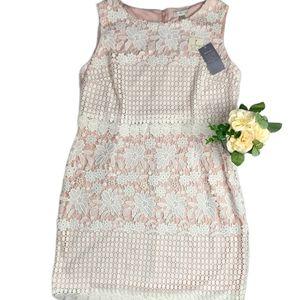 Precis NWT Crochet Pink Sheath Dress Plus Size 16